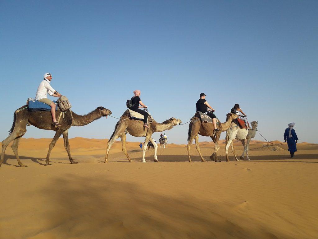 3 Days Fes To Marrakech saharadeserttrips trip tour camel ride sahara desert trips tours morocco maroc