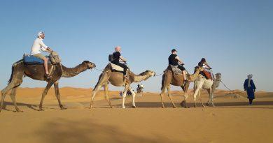 saharadeserttrips trip tour camel ride sahara desert trips tours morocco maroc