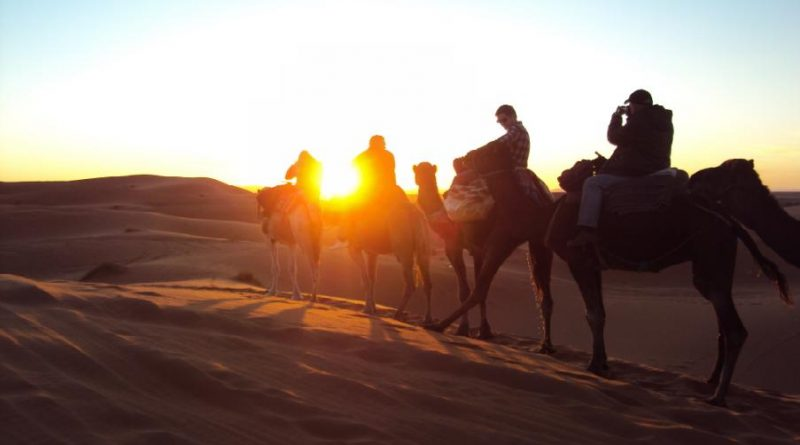 Sunset Camel treks at erg chebbi dunes merzouga