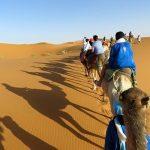 Morocco Camel Trekking riding camel