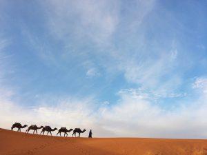 morocco desert tours 2019 2020