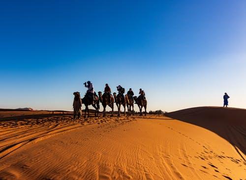 Sahara Desert Trips Private Morocco Trips - Marrakech Shared Tour - Fes Desert Itinerary Jamaa elfna Djemaa el Fna in Marrakesch Marrakech