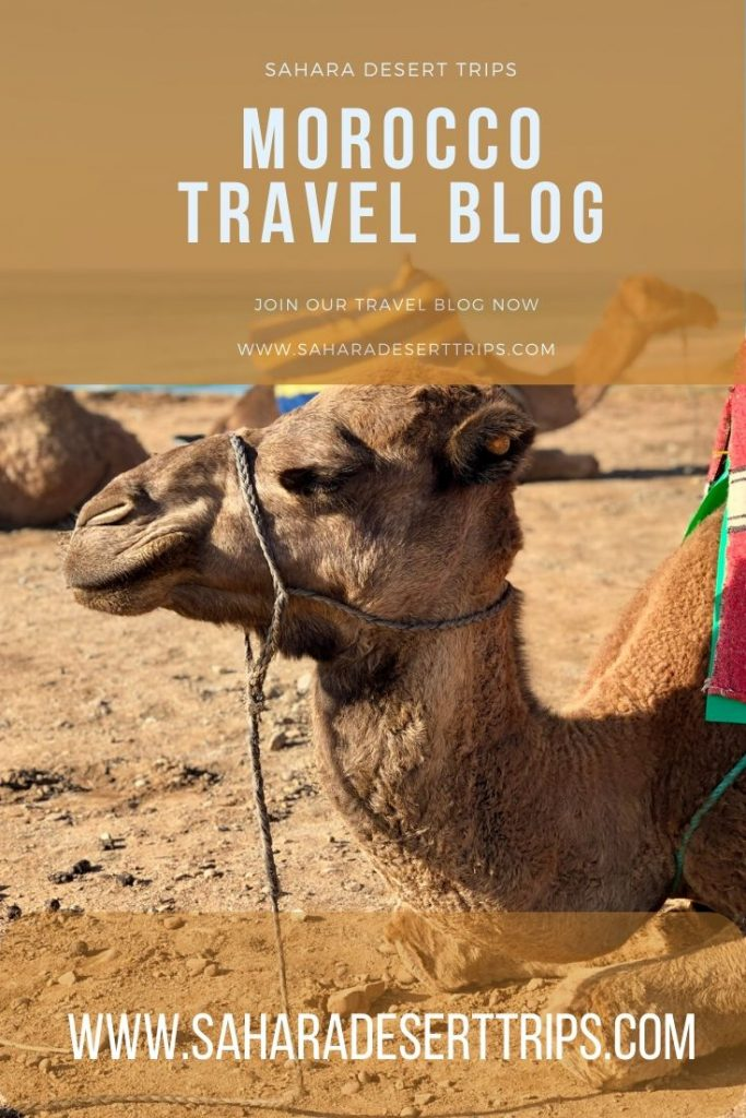 MOROCCO TRAVEL BLOG BY SAHARA DESERT TRIPS