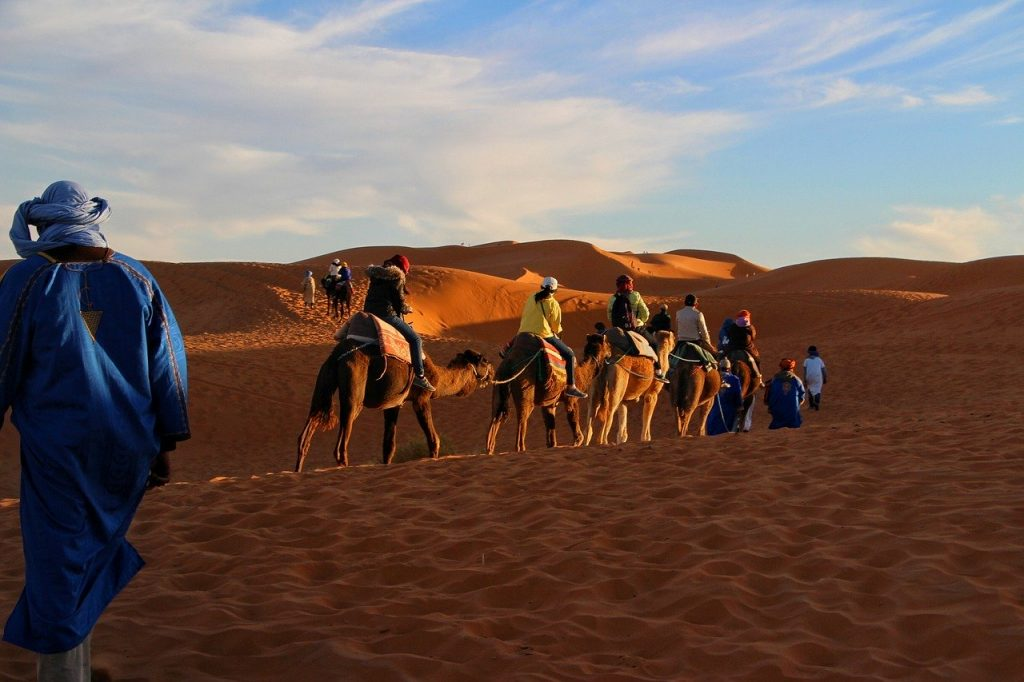 Fes to Marrakech Trips