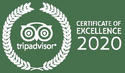 tripadvisor_2020 certificate of excellence - Sahara desert trips